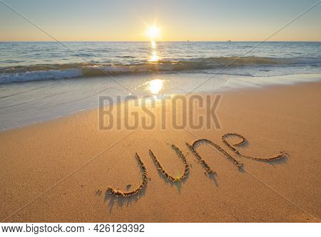 June word on sea shore during the sunset. Nature conceptual scene.