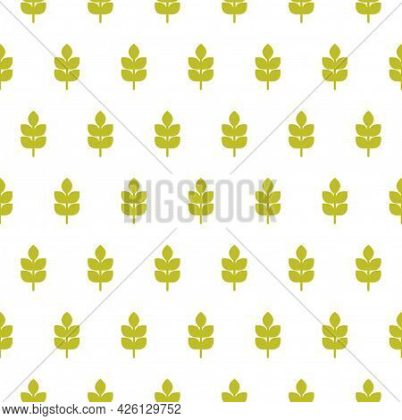 Seamless Pattern With Ears Of Wheat, Barley Or Rye. Natural Gren Ornament On White. Eco Company, Agr