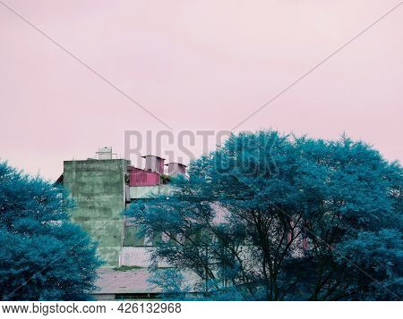 Beautiful Cemented House View Between Turquoise Color Tree At Light Color Sky Background.