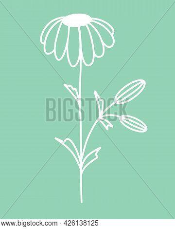 Chamomile Flower Silhouette, Vector. Illustration Of A Flower On A Stem. Simple Botanical White Elem