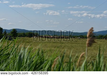 Countryside Road With Farm In Quebec, Canada