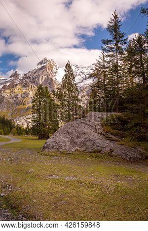 Bernese Alps Snow Peaks And Green Pine Trees Panorama Near Kandersteg Village, Canton Bern, Switzerl