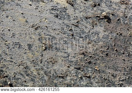 Surface Texture Smeared With Swamp Illuminated By Sunlight, Close-up Of Dirty Car In Mud After Off-r