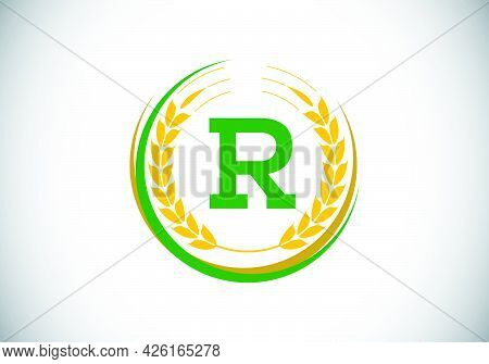 Initial Letter R Sign Symbol With Wheat Ears Wreath. Organic Wheat Farming Logo Design Concept. Agri