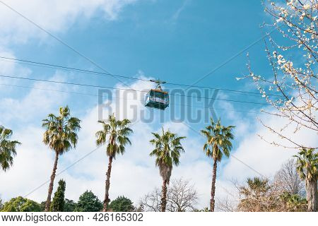 Funicular Cabin On The Cable Car On A Background The Blue Sky, With Palm And Blooming Fruit Tree