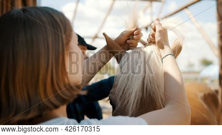 Back View Of Girl Braiding Mane Of A Light Brown Palomino Horse. Beautiful Horse With A Blonde Mane