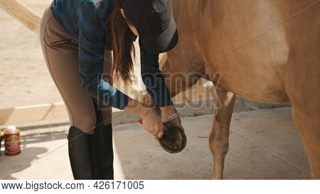 Female Horse Owner Cleaning Horse Hoof With A Hoof Picker. Light Brown Horses Hooves Being Cleaned I