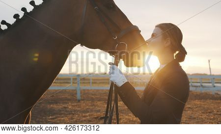 Horse Owner Kissing Her Dark Bay Horse With Love. Expressing Her Love For The Stallion. Girl Wearing