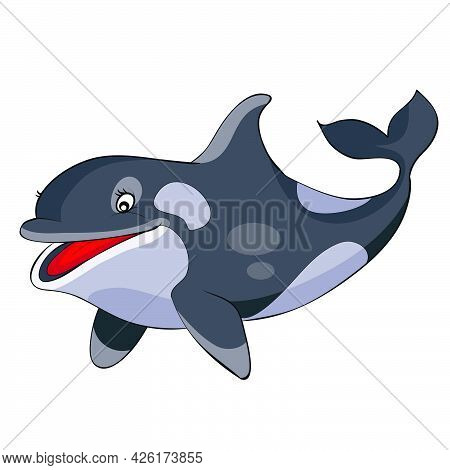 Cute Killer Whale Character In Gray, Cartoon Illustration, Isolated Object On White Background, Vect