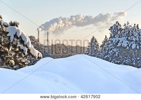 Snow, Trees And Smoking Tubes