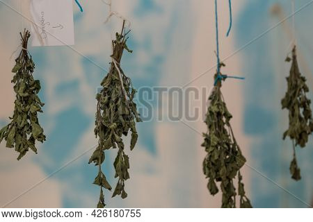 Medicinal Plant And Kitchen Spice Oregano - Herbal Plant Is Dried