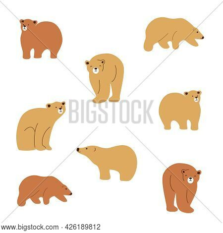 Vector Set Of Cute Drawn Bears. Bears In Different Poses. Beige Bear, Brown Bear. A Family Of Bears,