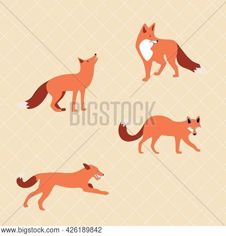 Vector Set Of Cute Drawn Foxes. Red Foxes In Different Poses. Family And A Flock Of Foxes. Pattern,