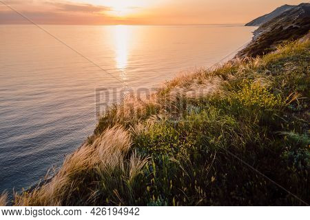 Aerial View Of Summer Coastline With Grass And Quiet Sea. Coastline With Sunset Colors