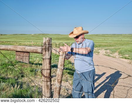 Senior man in a cowboy hat is opening or closing cattle barbed wire gate on a ranch road, summer scenery with green prairie in Colorado