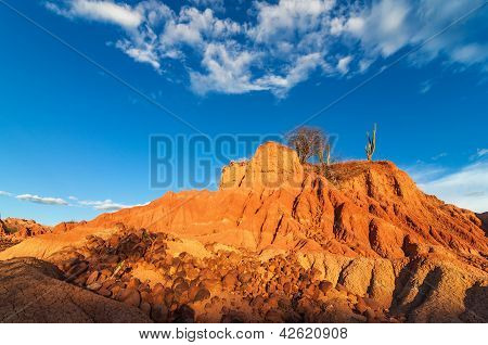 Red Desert And Scattered Rocks