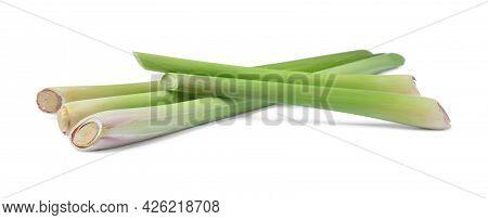 Fresh Aromatic Lemongrass Stalks On White Background