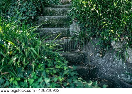 Ancient stone steps in the park are overgrown with grass. Portugal.