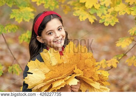 What A Beauty. Cheerful Girl With Yellow Maple Leaves. Happy Kid Enjoy Fall Weather. Small Girl In A