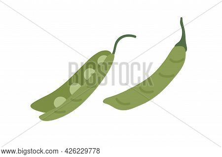Open And Closed Pea Pods With Fresh Raw Green Beans. Organic Vegetable With Seeds. Healthy Natural F