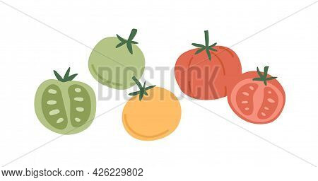 Fresh Whole Tomato Vegetables And Their Cut Half Pieces Of Different Color. Red, Green And Yellow Ve