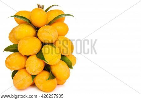 Sweet And Sour Marian Plum Or Ma Yong Chid (in Thailand Language Name).