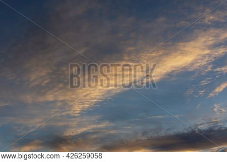 Eagle Sky Beautiful Clouds. A Black Silhouette Of A Bird Of Prey Soaring Among The Clouds. The Conce