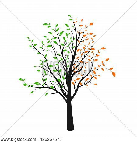 Abstract Tree Silhouette With Green And Red Leaves Isolated On White Background. Vibrant Tree Logo.