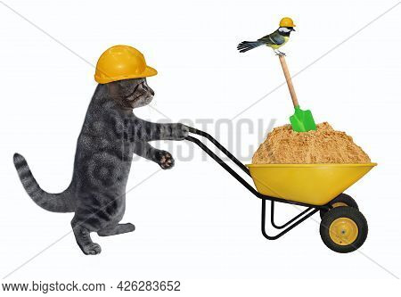 A Gray Cat Builder In A Construction Helmet Pushes A Wheel Barrow Full Of Sand. White Background. Is