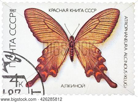 Ussr - Circa 1986: A Stamp Printed In The Ussr Shows Butterfly Alcinous, Series, Circa 1986