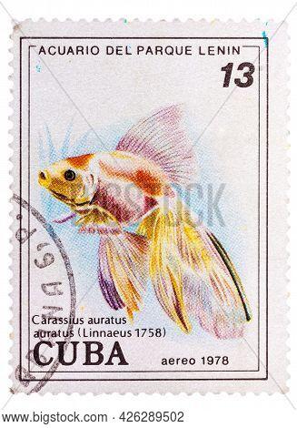 Cuba - Circa 1978: A Postage Stamp Printed In The Cuba Shows Carassius Auratus Auratus - Asian Goldf
