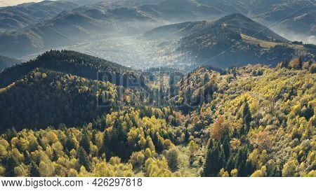 Aerial green pine trees forest at mountain ridges. autumn nobody nature landscape. Greenery grass at hills in mist haze. Cinematic Carpathians mount ranges, Ukraine, Europe. Travel and tourism concept