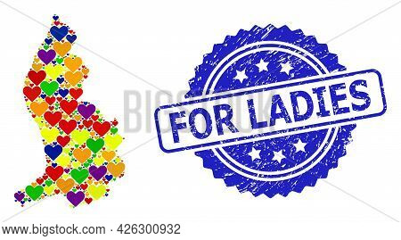 Blue Rosette Textured Seal With For Ladies Phrase. Vector Mosaic Lgbt Map Of Liechtenstein With Love