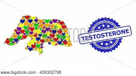 Blue Rosette Rubber Seal With Testosterone Message. Vector Mosaic Lgbt Map Of Rio Grande Do Norte St