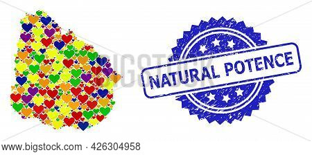 Blue Rosette Distress Stamp With Natural Potence Caption. Vector Mosaic Lgbt Map Of Uruguay With Hea