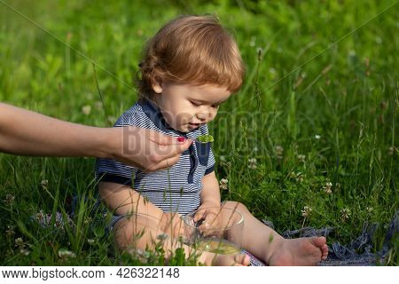 Cute Toddler Baby Eating Healthy Food. Feeding With Spoon. Mothers Hand Feeding Baby With A Spoon.