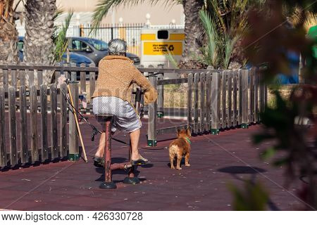 Senior Woman Using Exercise Machines Outdoor. Small Dog Is Waiting For Woman. Lifestyle And Healthca
