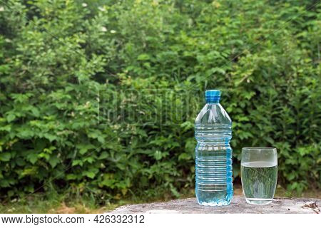 A Water Bottle And A Glass Filled With Water On The Surface Of A Stump Against The Green Foliage Of
