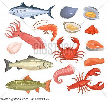 Cartoon Seafood. Fresh Fish, Oyster, Lobster, Red Tuna, Salmon, Octopus, Shrimp, Squid. Raw Sea Anim
