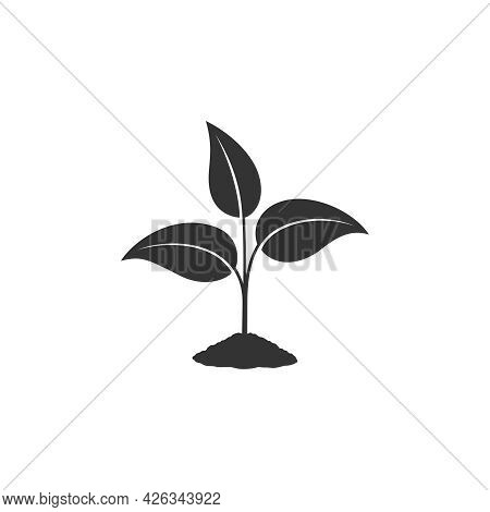 Sprout Graphic Icon. Young Plant Growing In The Ground Sign Isolated On White Background. Seedling S