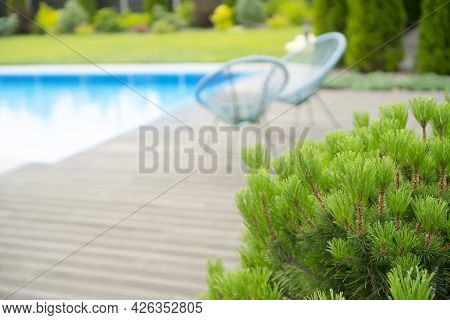 Modern Luxury Pool And Wooden Terrace With Chairs. Blurred Defocused Background With Copy Space.