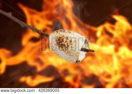 Delicious Puffy Marshmallow Roasting Over Bonfire. Yummy Snack