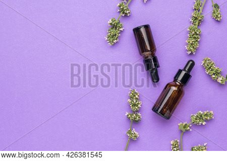 Two Vials Of Medicinal Solution And Medicinal Herbs On A Purple Background. The Concept Of Treatment