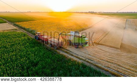 Aerial View Of Transshipment From Agricultural Harvester, Combine To The Trailer, Unloading Harveste