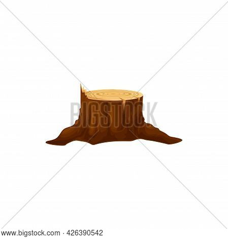 Wood Stump Of Cut Tree Trunk Isolated Cartoon Icon. Vector Circle Of Log, Cross Section Of Firewood