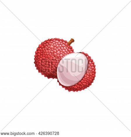 Lychee Fruit, Exotic Litchi Vector Plant. Isolated Peeled And Unpeeled Tropical Lichi With Fresh Pul