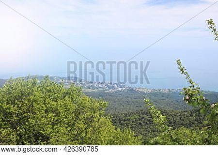 View From The Observation Deck To Sunny Yalta, Crimea. Frame With A Flowering Tree, May.