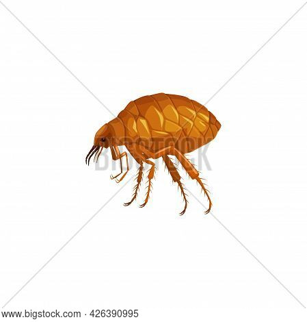 Flea Icon, Insect Parasite Pest Control Service And Health Disinsection Symbol, Vector Isolated. Fle