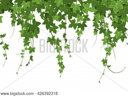 Ivy Climbing Plant Border Seamless Composition With Row Of Ripe Leaves With Verdant Hedge And Greene