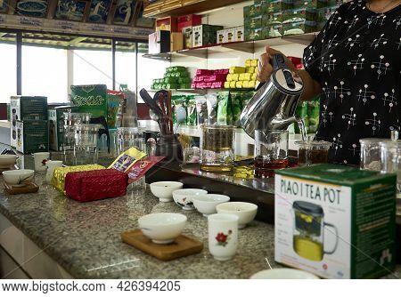 Mae Salong, Chiang Rai Province, Thailand - February 18, 2019: 101 Tea Plantation  The Girl Pours Te